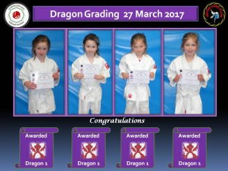Grading 20.03.17 dragons a